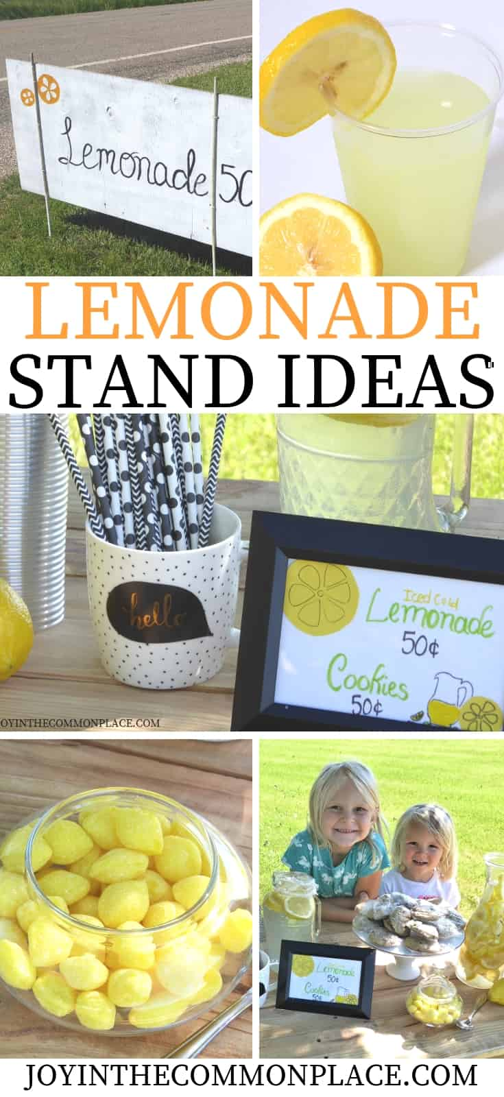 How to Set Up a Successful Lemonade Stand for Kids!