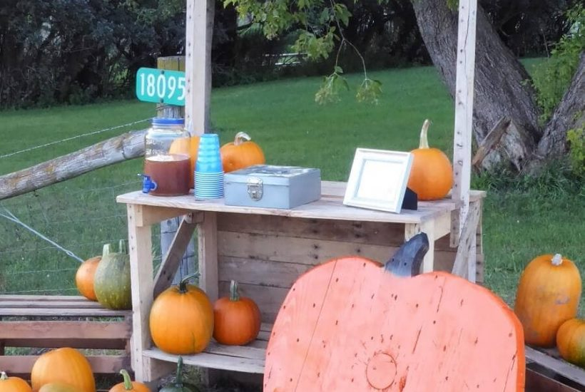DIY Pumpkin Stand Ideas