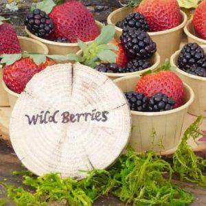 DIY Woodland Animals Party Food Labels
