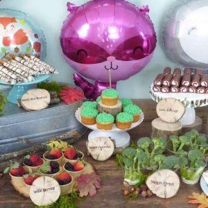 Host a Woodland Animals Birthday Party